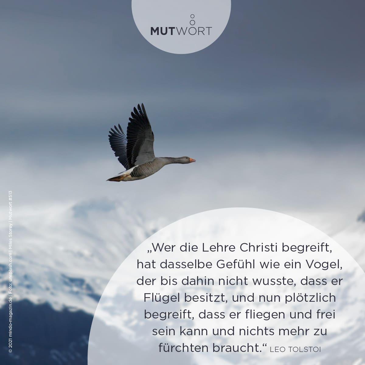 """""""Wer die Lehre Christi begreift, hat dasselbe Gefühl wie ein Vogel, der bis dahin nicht wusste, dass er Flügel besitzt, und nun plötzlich begreift, dass er fliegen und frei sein und nichts mehr zu fürchten braucht."""" – Leo Tolstoi"""