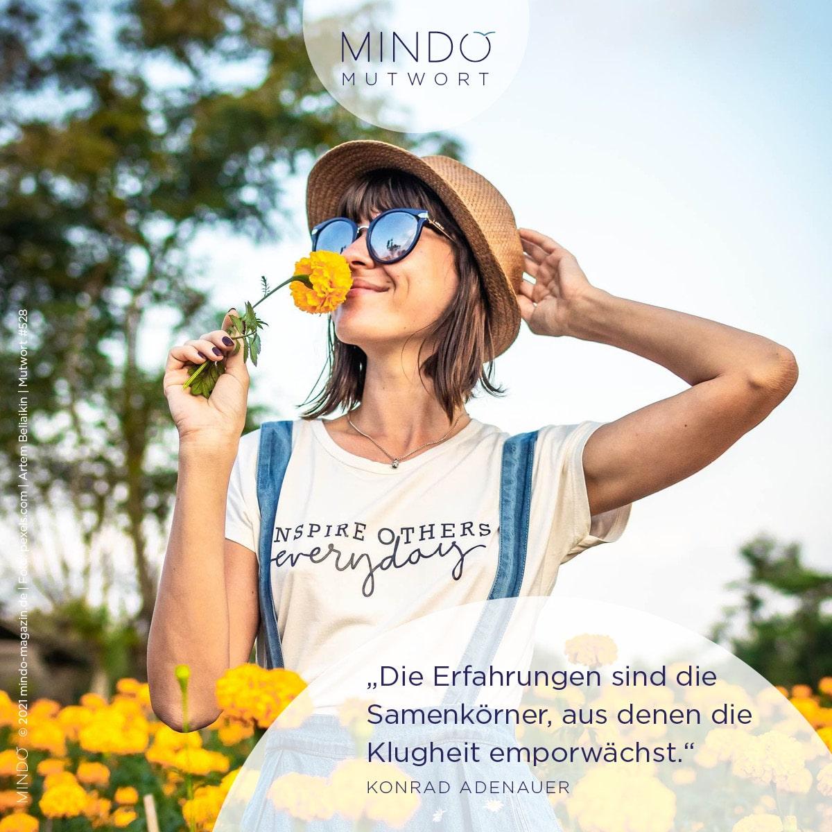 """""""Die Erfahrungen sind die Samenkörner, aus denen die Klugheit emporwächst.""""- Konrad Adenauer"""
